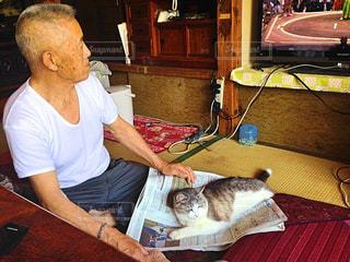 老人と猫の写真・画像素材[367006]