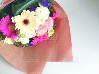 花の写真・画像素材[452687]