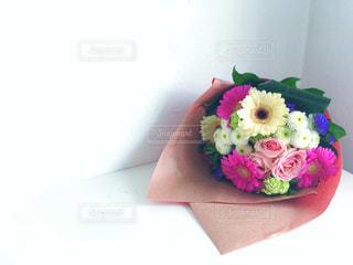 花の写真・画像素材[452689]
