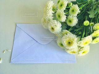 手紙の写真・画像素材[452716]