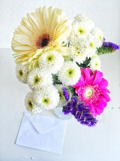 花の写真・画像素材[455329]