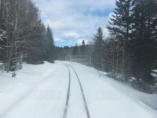 雪に覆われた斜面でスキーをする男のクロスカントリーの写真・画像素材[2845285]