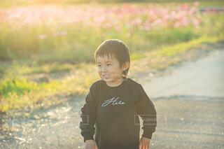 コスモス畑の脇道を歩く男の子の写真・画像素材[3812517]