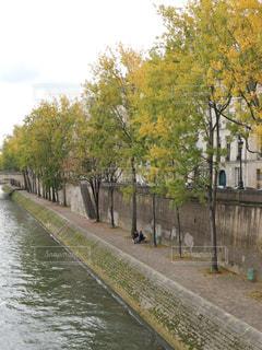 秋のパリの写真・画像素材[805880]