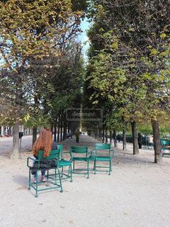 秋のパリの写真・画像素材[805920]