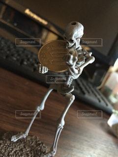 骨の写真・画像素材[253270]