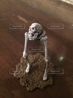 骸骨の写真・画像素材[253274]