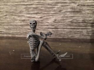 骨の写真・画像素材[253275]