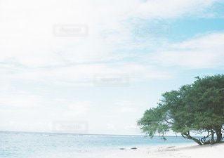 風景の写真・画像素材[6213]