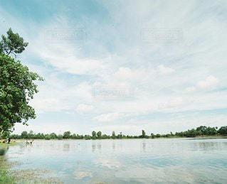 風景の写真・画像素材[6181]