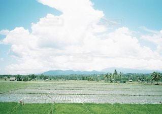 風景の写真・画像素材[6109]