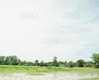 風景の写真・画像素材[6058]