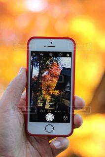 携帯電話を持つ手の写真・画像素材[850247]