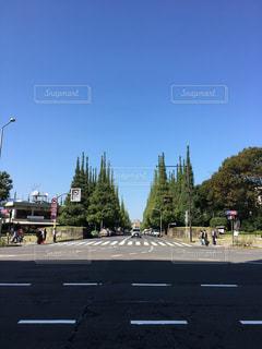 風景 - No.254048