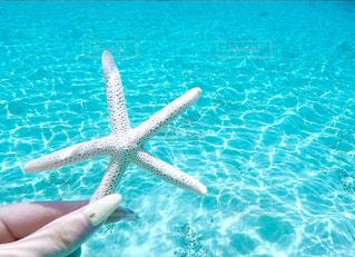 海の写真・画像素材[562901]
