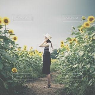 女性の写真・画像素材[6018]