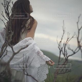 女性の写真・画像素材[6016]