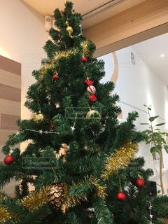 クリスマスの写真・画像素材[255168]