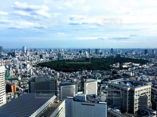 東京都庁からの都市の景色の写真・画像素材[856565]