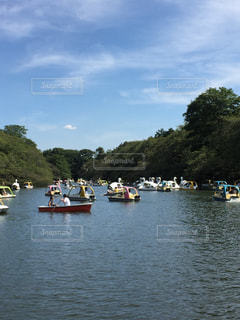 ボートの写真・画像素材[256532]