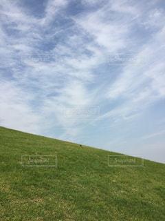 空の写真・画像素材[260881]