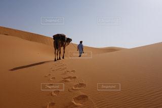 砂漠の写真・画像素材[256080]