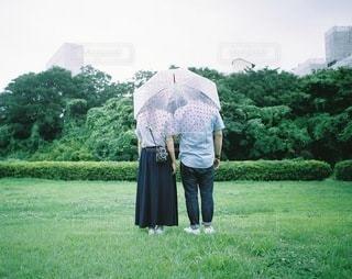 女性,男性,2人,カップル,木,傘,人物,夫婦,相合傘