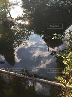 風景の写真・画像素材[256319]