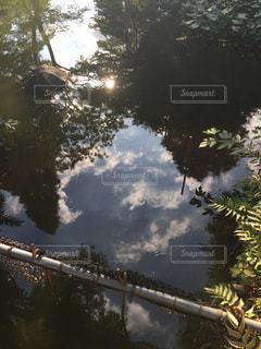 風景の写真・画像素材[256321]
