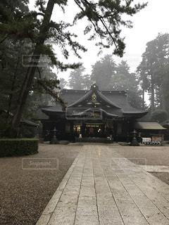 神社の写真・画像素材[267150]