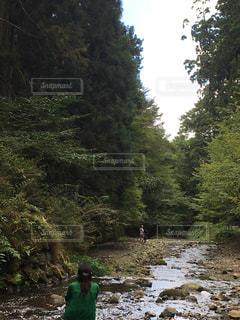 自然の写真・画像素材[256435]