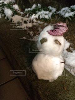 冬の写真・画像素材[256459]