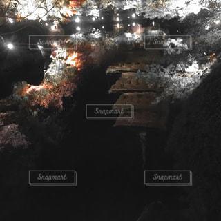 暗いの写真・画像素材[257584]