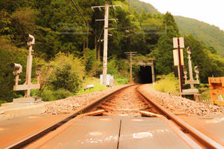 風景 - No.257082