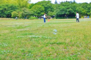 公園の写真・画像素材[571008]