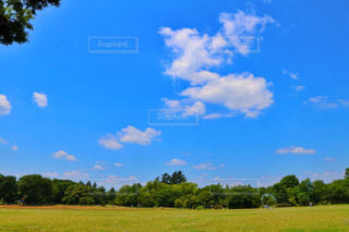 空の写真・画像素材[571011]