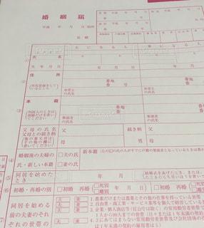 ピンク - No.404598