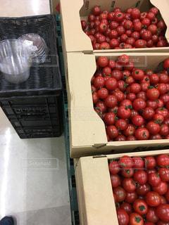 トマトの宝石 - No.1167118
