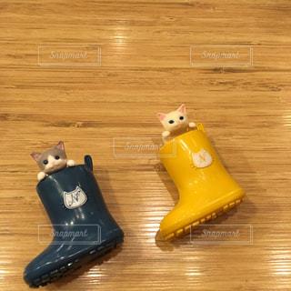 長靴と猫の写真・画像素材[2599119]