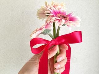 ガーベラの花束を君にの写真・画像素材[301365]