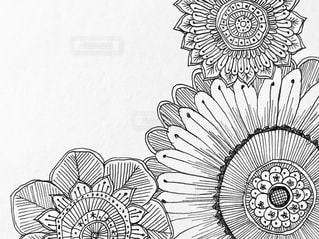 手書きの花のイラストのアップ♪の写真・画像素材[1085641]
