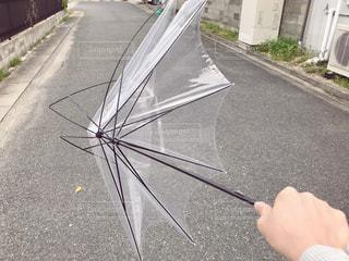 先日の強風で傘壊れました(゚o゚;;の写真・画像素材[1116512]