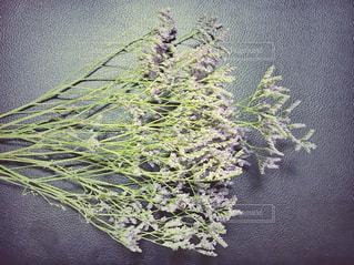紫の花束と皮素材 - No.1246837
