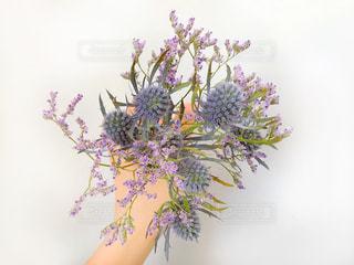 紫のブーケを持った手の写真・画像素材[1249169]