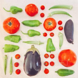 畑で採れた夏野菜♪の写真・画像素材[1350876]