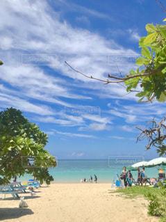 宮古島のビーチの写真・画像素材[1365183]