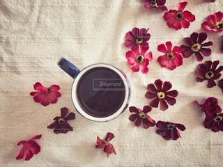 コーヒーとコスモスの写真・画像素材[1505286]