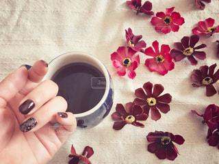 コーヒーと秋ネイルの写真・画像素材[1505290]