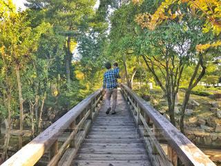 公園の木製の橋と親子の写真・画像素材[1561009]