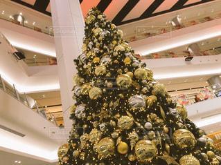 クリスマスツリーの写真・画像素材[1688919]